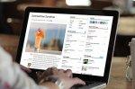 surfowanie po internecie